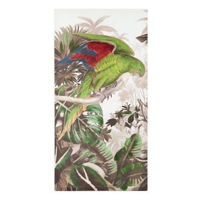 Vászon kép 60x3x120 cm, papagáj piros-kék szárnnyal - SAO PAULO