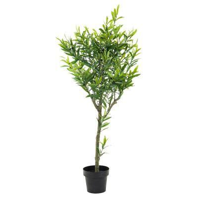 Műnövény, álló, oliva - OLIVIER