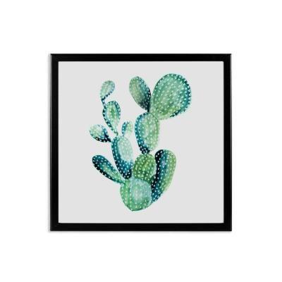 Keretezett falikép 40x40 cm, kerek kaktusz  - WILD LIFE