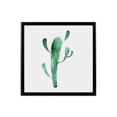 Keretezett falikép 40x40 cm, hosszúkás kaktusz  - WILD LIFE