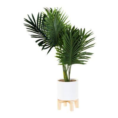 Műnövény, pálma kaspóval, tartóval - PALMIER