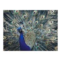 Vászon falikép, páva, 60x80 cm, pávakék - PAON