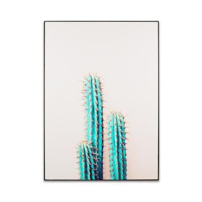 Falikép 50x70 cm, kaktusz - SEULS