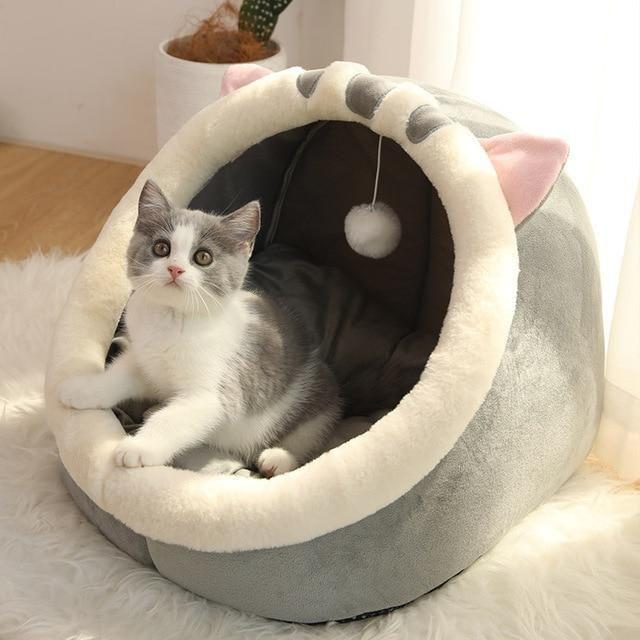 macska fekhely